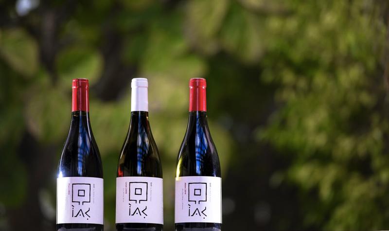 Gito wines