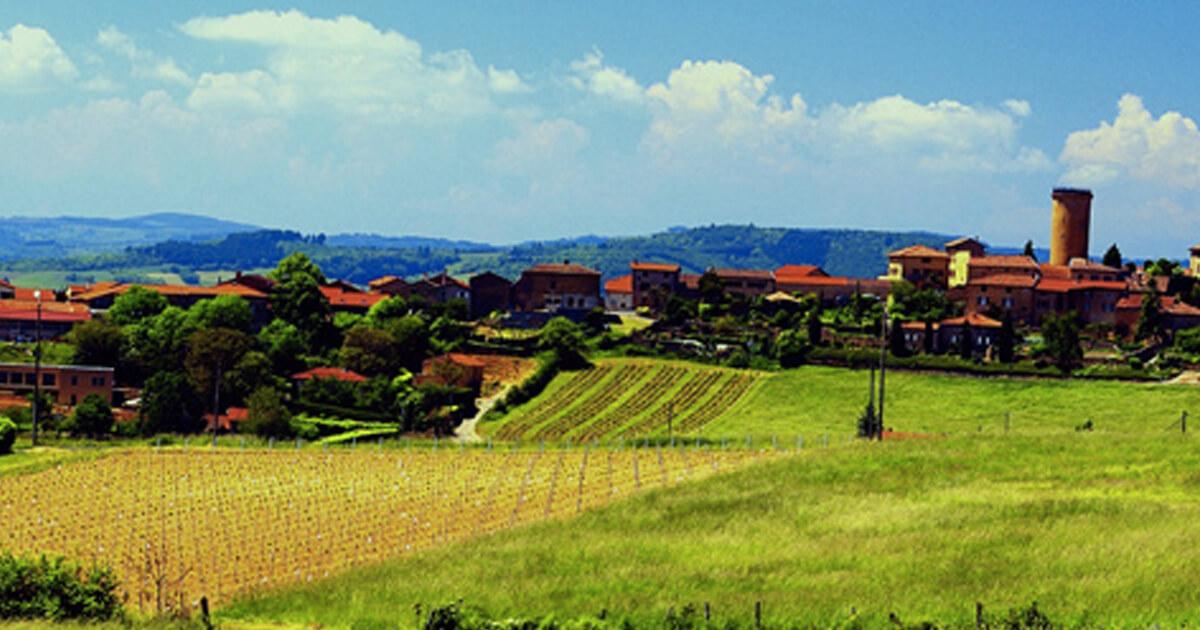 Kosher Wines From Beaujolais France